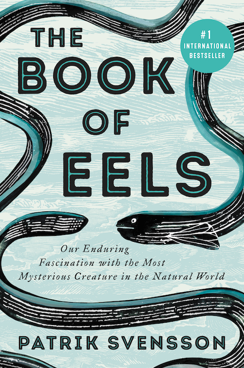 On the Many Mysteries of the European Eel