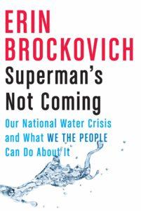 superman's not coming_erin brockovich