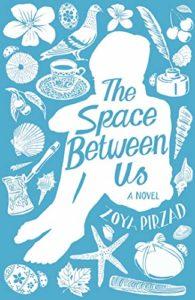space between us_zoya pirzad
