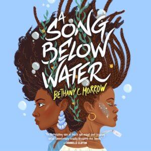 A SONG BELOW WATER audiobook