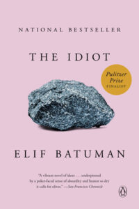 Elif Batuman, The Idiot