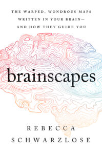 Rebecca Schwarzlose, Brainscapes: The Warped, Wondrous Maps Written in Your Brain–And How They Guide You