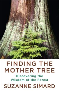 Suzanne Simard_Finding the Mother Tree