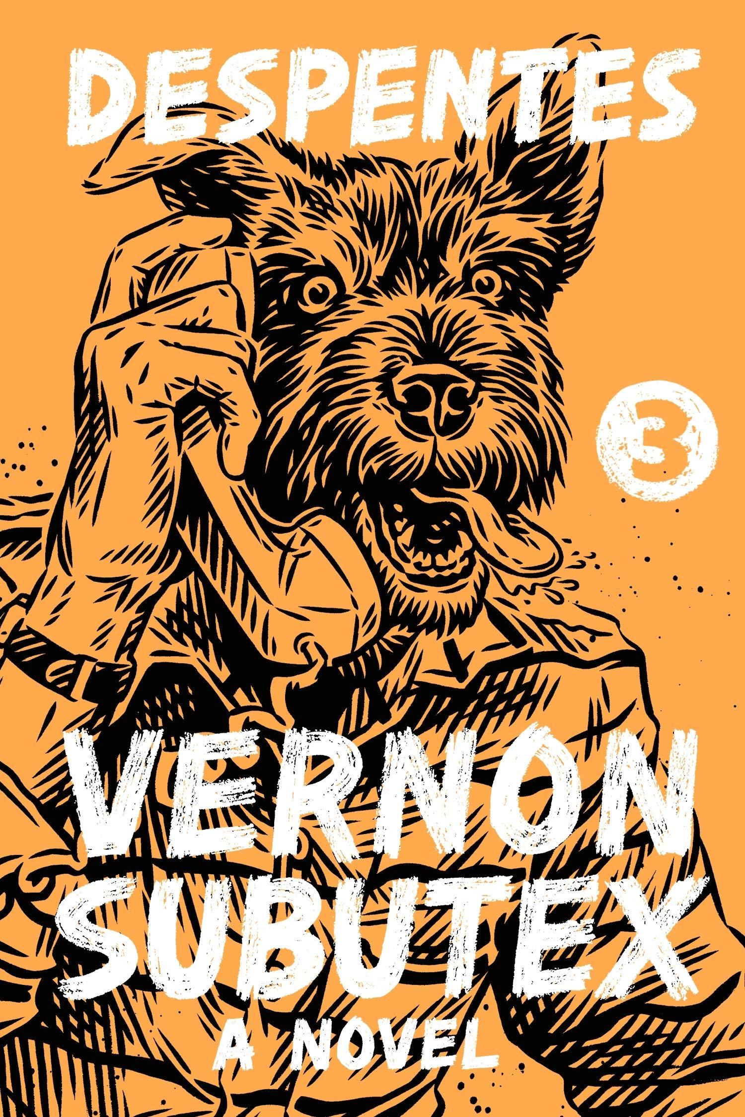 Virginie Despentes_Vernon Subutex 3