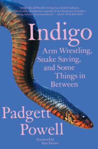 Padgett Powell, Indigo