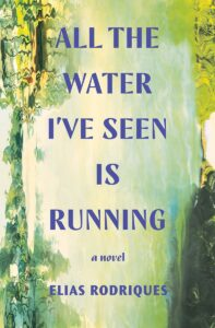elias rodriques_all the water i've seen is running
