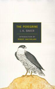 The Peregrine, JA Baker
