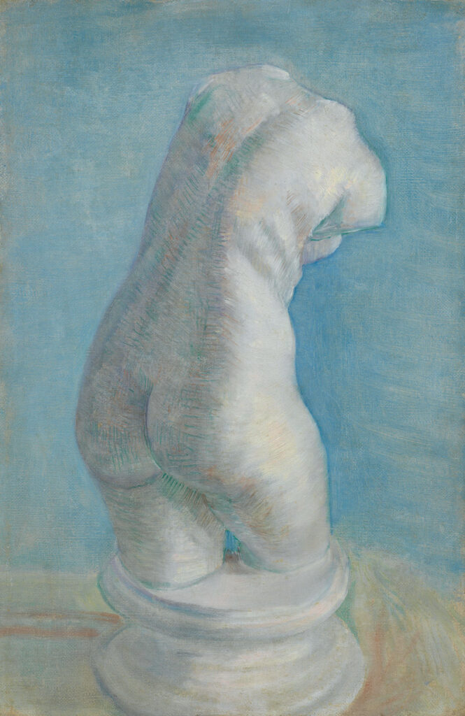 Plaster Cast woman's torso