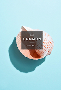 The Common Issue 22