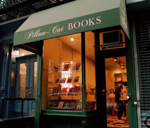 pillow-cat books