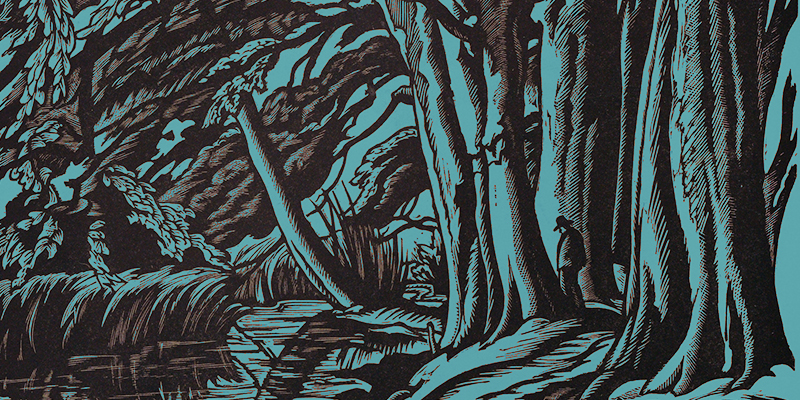 Five Thrillers Set In the Woods
